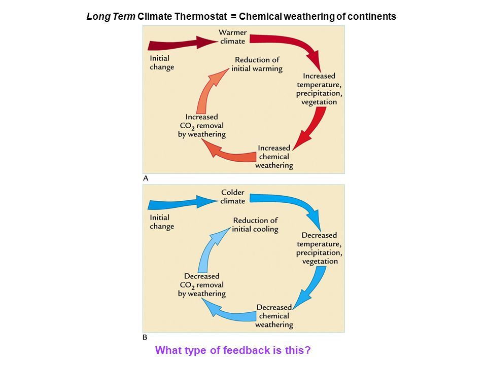 Long Term Climate Thermostat = Chemical weathering of continents What type of feedback is this?