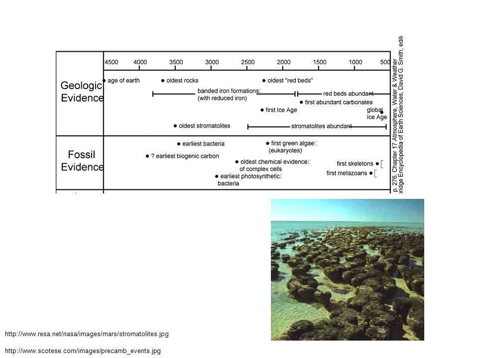 http://www.scotese.com/images/precamb_events.jpg http://www.resa.net/nasa/images/mars/stromatolites.jpg