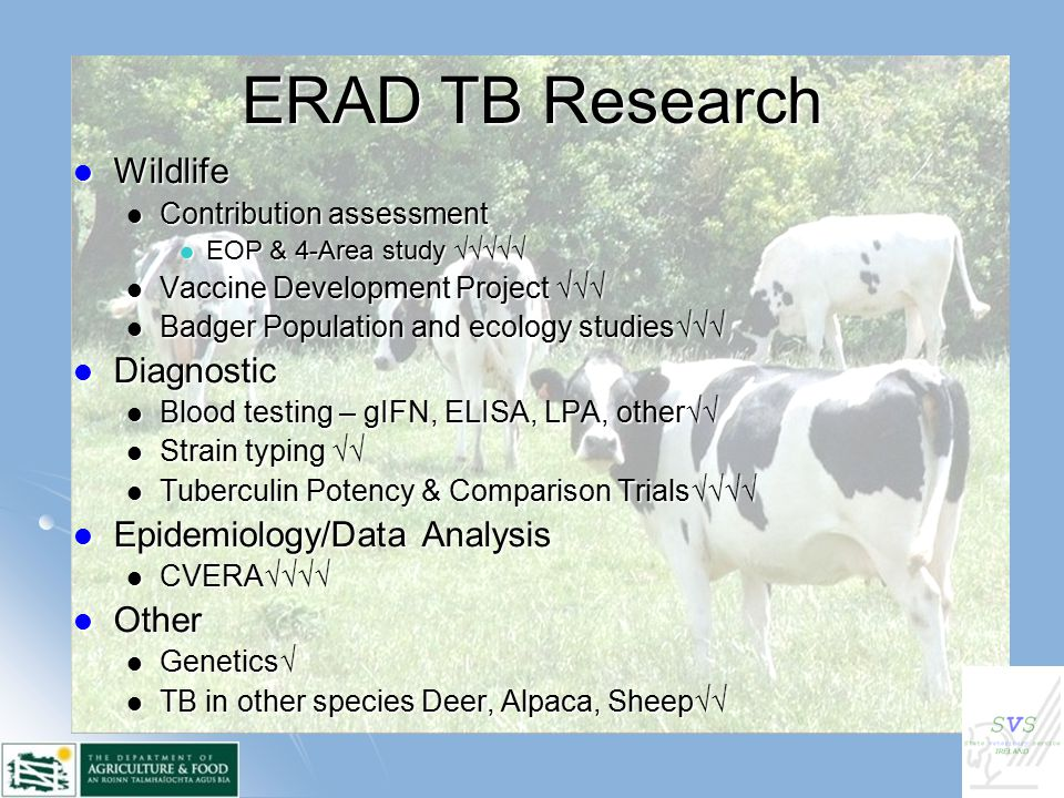 ERAD TB Research Wildlife Wildlife Contribution assessment Contribution assessment EOP & 4-Area study √√√√√ EOP & 4-Area study √√√√√ Vaccine Development Project √√√ Vaccine Development Project √√√ Badger Population and ecology studies√√√ Badger Population and ecology studies√√√ Diagnostic Diagnostic Blood testing – gIFN, ELISA, LPA, other√√ Blood testing – gIFN, ELISA, LPA, other√√ Strain typing √√ Strain typing √√ Tuberculin Potency & Comparison Trials√√√√ Tuberculin Potency & Comparison Trials√√√√ Epidemiology/Data Analysis Epidemiology/Data Analysis CVERA√√√√ CVERA√√√√ Other Other Genetics√ Genetics√ TB in other species Deer, Alpaca, Sheep√√ TB in other species Deer, Alpaca, Sheep√√