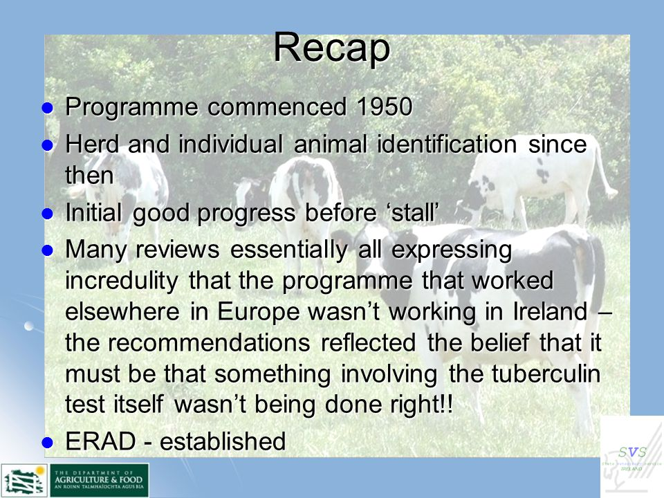 Recap Programme commenced 1950 Programme commenced 1950 Herd and individual animal identification since then Herd and individual animal identification since then Initial good progress before 'stall' Initial good progress before 'stall' Many reviews essentially all expressing incredulity that the programme that worked elsewhere in Europe wasn't working in Ireland – the recommendations reflected the belief that it must be that something involving the tuberculin test itself wasn't being done right!.