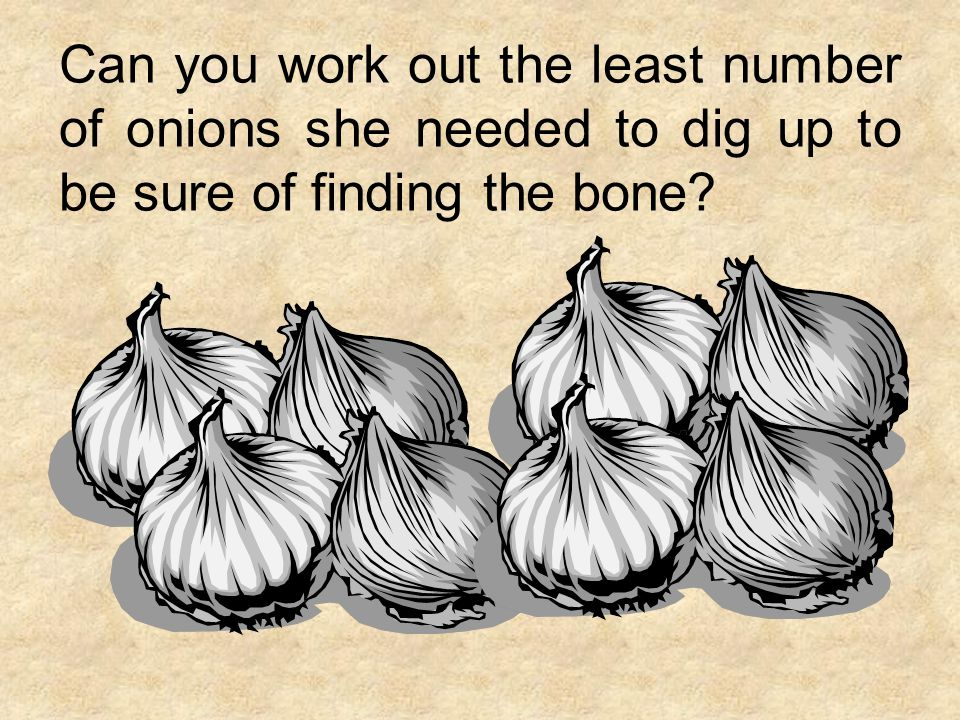 Can you work out the least number of onions she needed to dig up to be sure of finding the bone