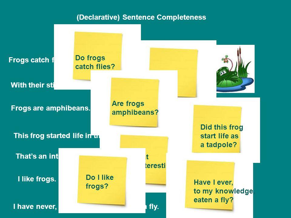 (Declarative) Sentence Completeness Frogs catch flies.