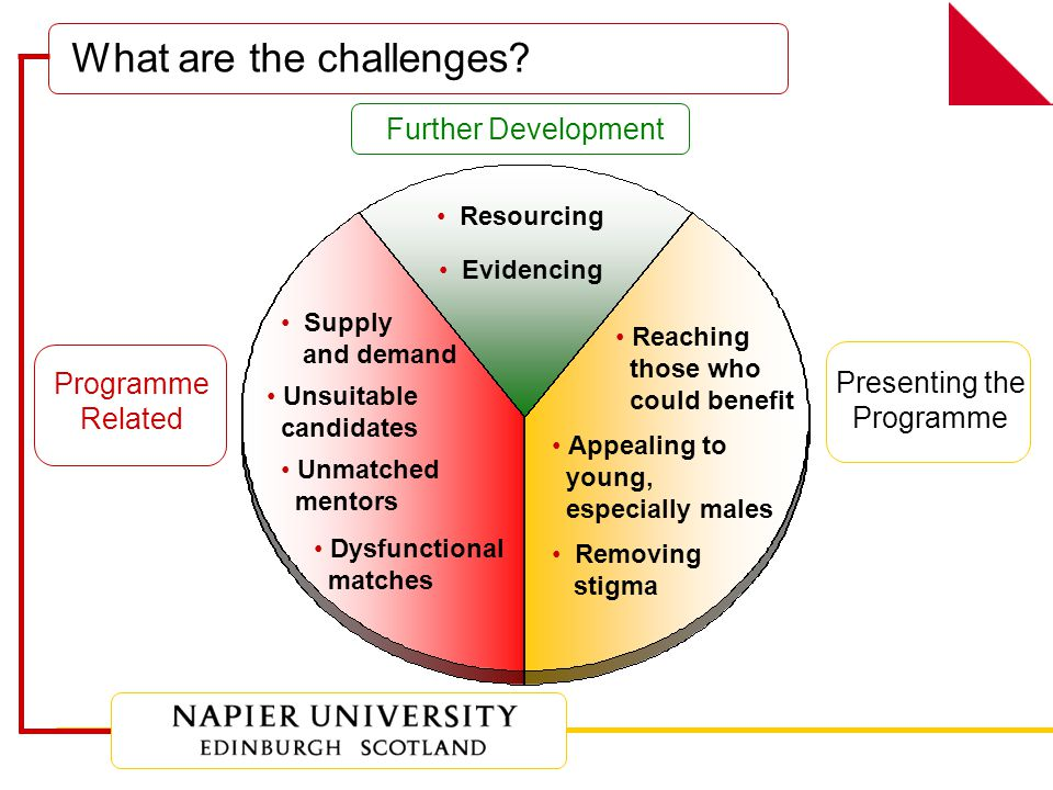 Further Development Resourcing Evidencing Presenting the Programme Reaching those who could benefit Appealing to young, especially males Removing stigma Programme Related Supply and demand Dysfunctional matches Unmatched mentors Unsuitable candidates What are the challenges