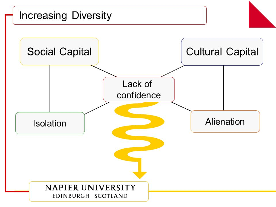 Increasing Diversity Social Capital Alienation Isolation Cultural Capital Lack of confidence