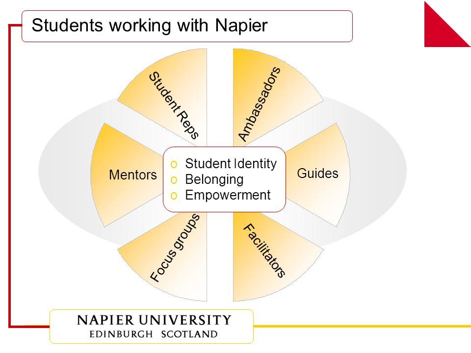 What's the process? Promote Mentors Train Promote Mentees Match Follow along Conclude Evaluate