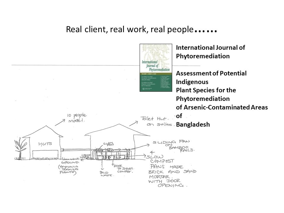Real client, real work, real people …… International Journal of Phytoremediation Assessment of Potential Indigenous Plant Species for the Phytoremediation of Arsenic-Contaminated Areas of Bangladesh