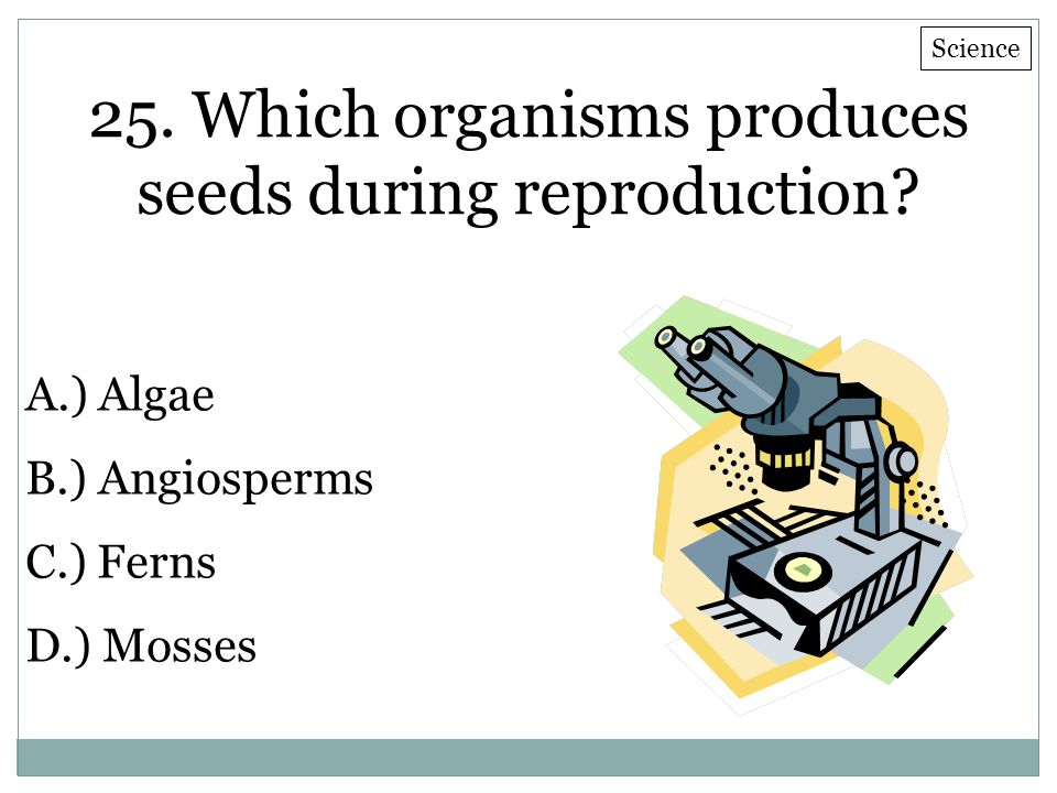 25. Which organisms produces seeds during reproduction? A.) Algae B.) Angiosperms C.) Ferns D.) Mosses Science