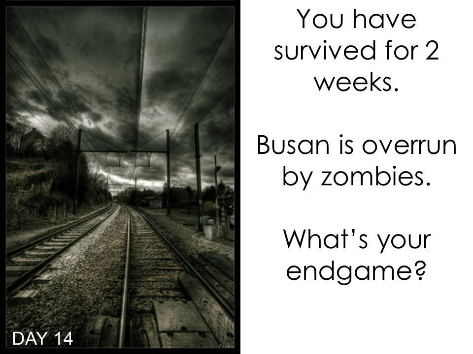 You have survived for 2 weeks. Busan is overrun by zombies. What's your endgame DAY 14