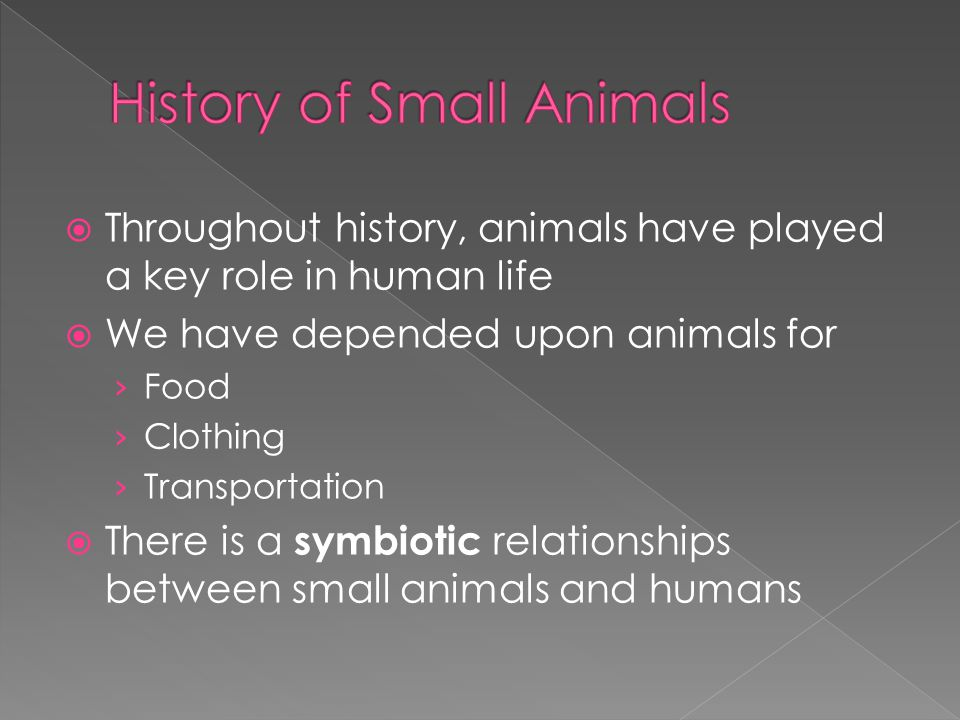  Throughout history, animals have played a key role in human life  We have depended upon animals for › Food › Clothing › Transportation  There is a