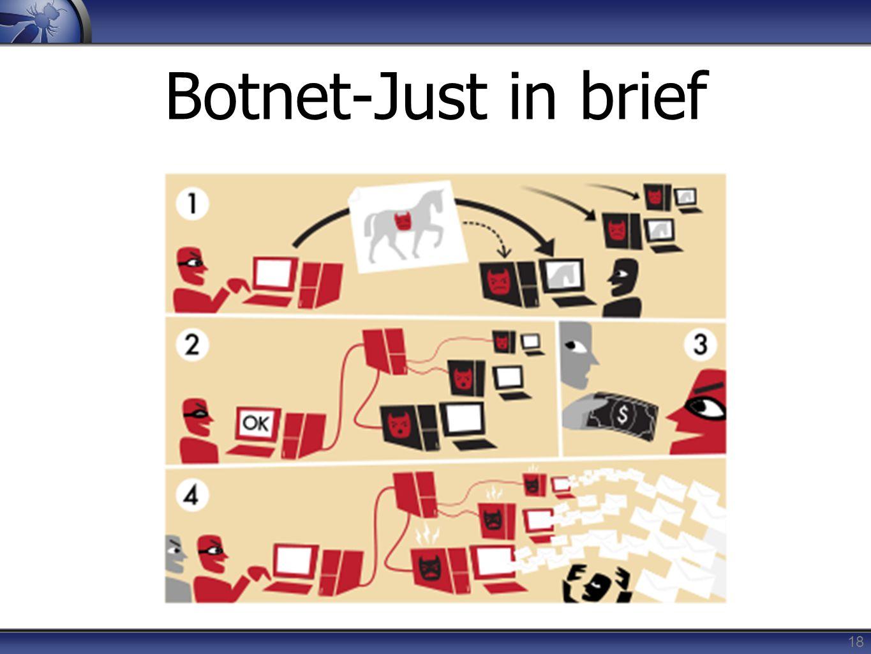 Botnet-Just in brief 18