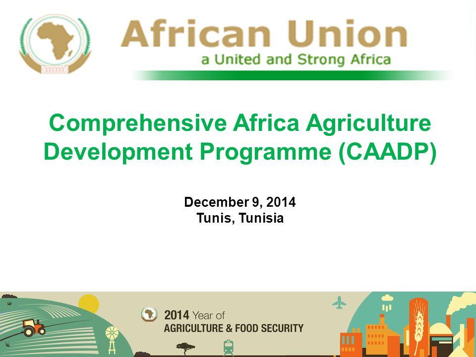 CAADP Results Framework 2015-2025