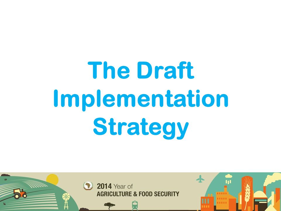 The Draft Implementation Strategy