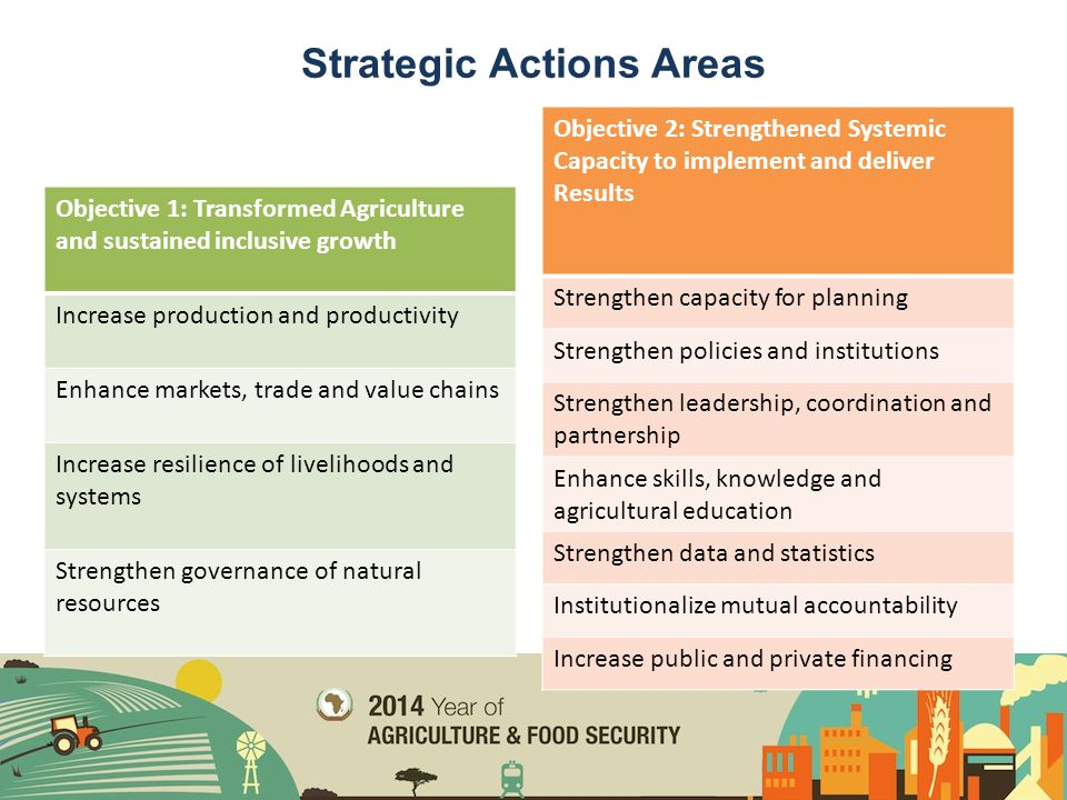 Strategic Actions Areas Objective 1: Transformed Agriculture and sustained inclusive growth Increase production and productivity Enhance markets, trad