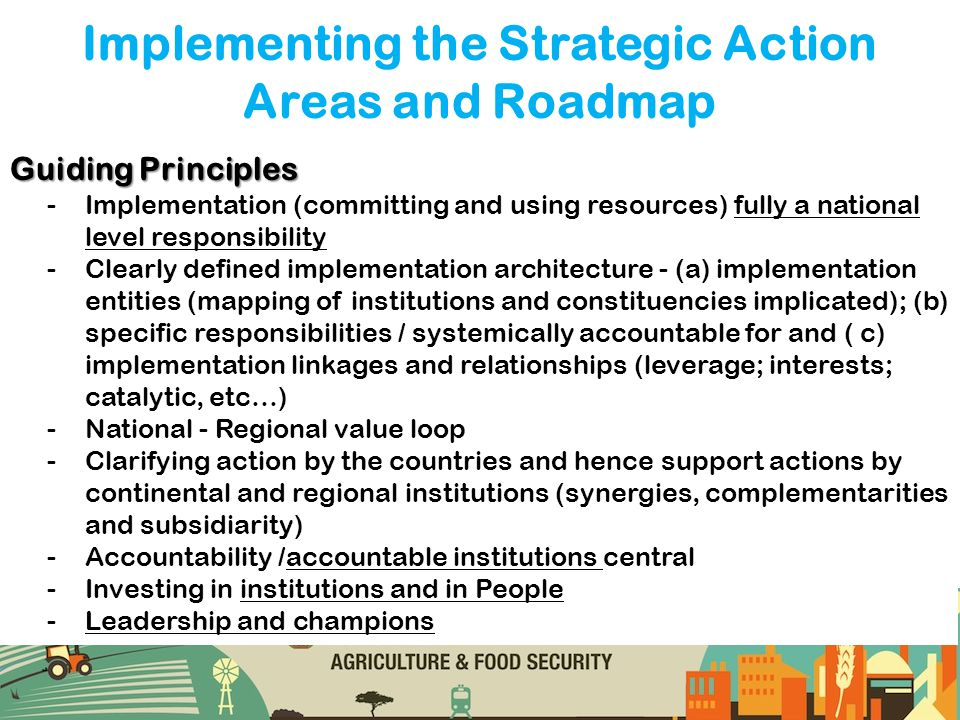 Implementing the Strategic Action Areas and Roadmap Guiding Principles -Implementation (committing and using resources) fully a national level respons