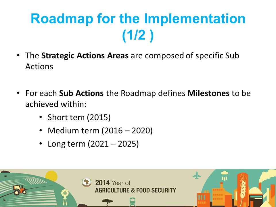 The Strategic Actions Areas are composed of specific Sub Actions For each Sub Actions the Roadmap defines Milestones to be achieved within: Short tem