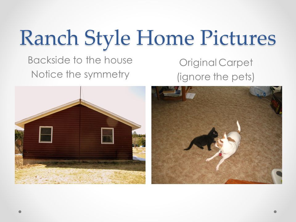 Ranch Style Home Pictures Backside to the house Notice the symmetry Original Carpet (ignore the pets)