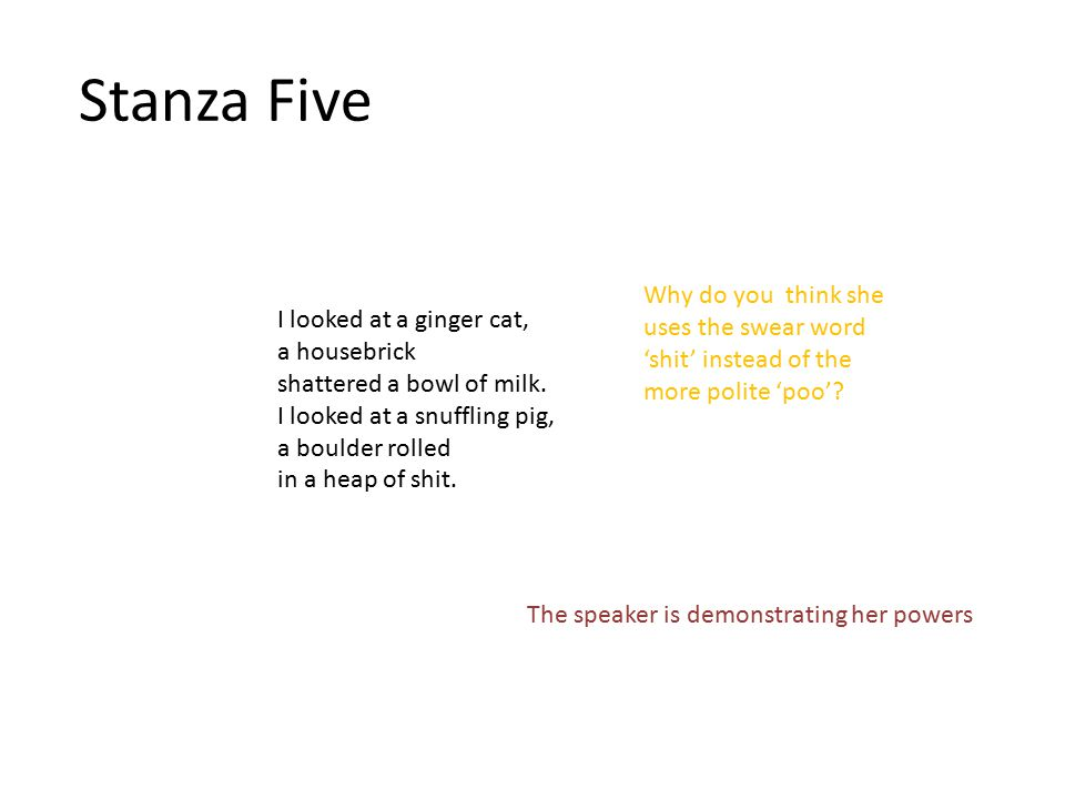Stanza Five I looked at a ginger cat, a housebrick shattered a bowl of milk. I looked at a snuffling pig, a boulder rolled in a heap of shit. The spea