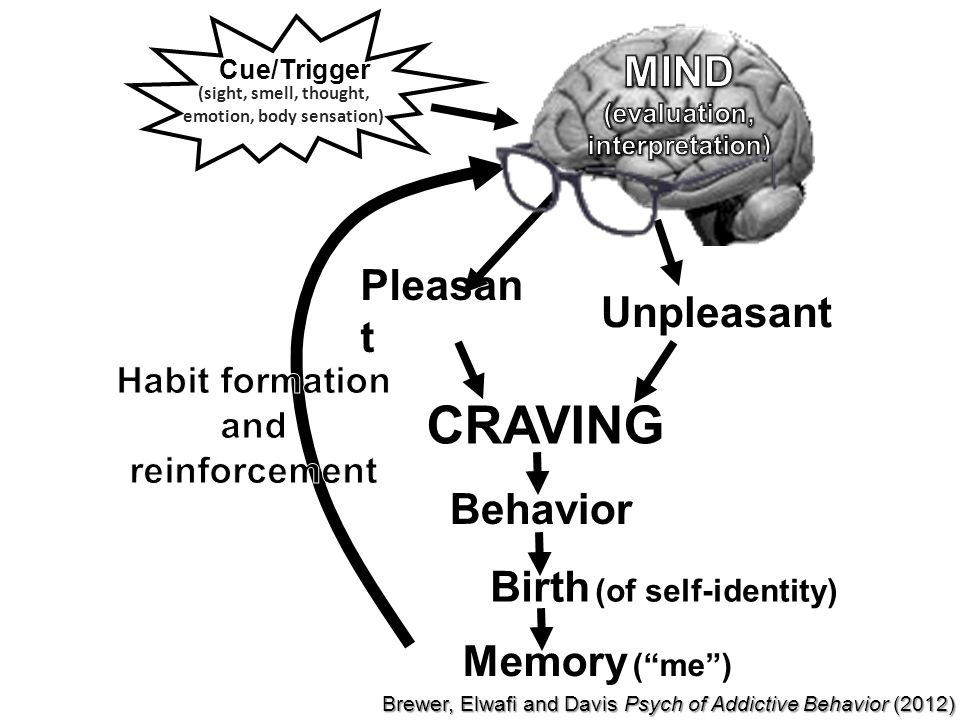 Cue/Trigger Pleasan t Unpleasant CRAVING Behavior Memory ( me ) (sight, smell, thought, emotion, body sensation) Birth (of self-identity) Brewer, Elwafi and Davis Psych of Addictive Behavior (2012)