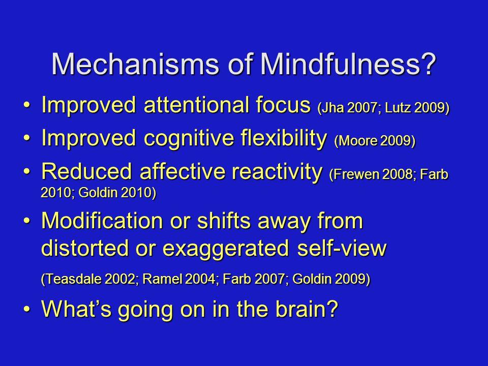 Mechanisms of Mindfulness? Improved attentional focus (Jha 2007; Lutz 2009)Improved attentional focus (Jha 2007; Lutz 2009) Improved cognitive flexibi