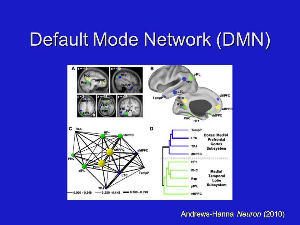 Default Mode Network (DMN) Andrews-Hanna Neuron (2010)