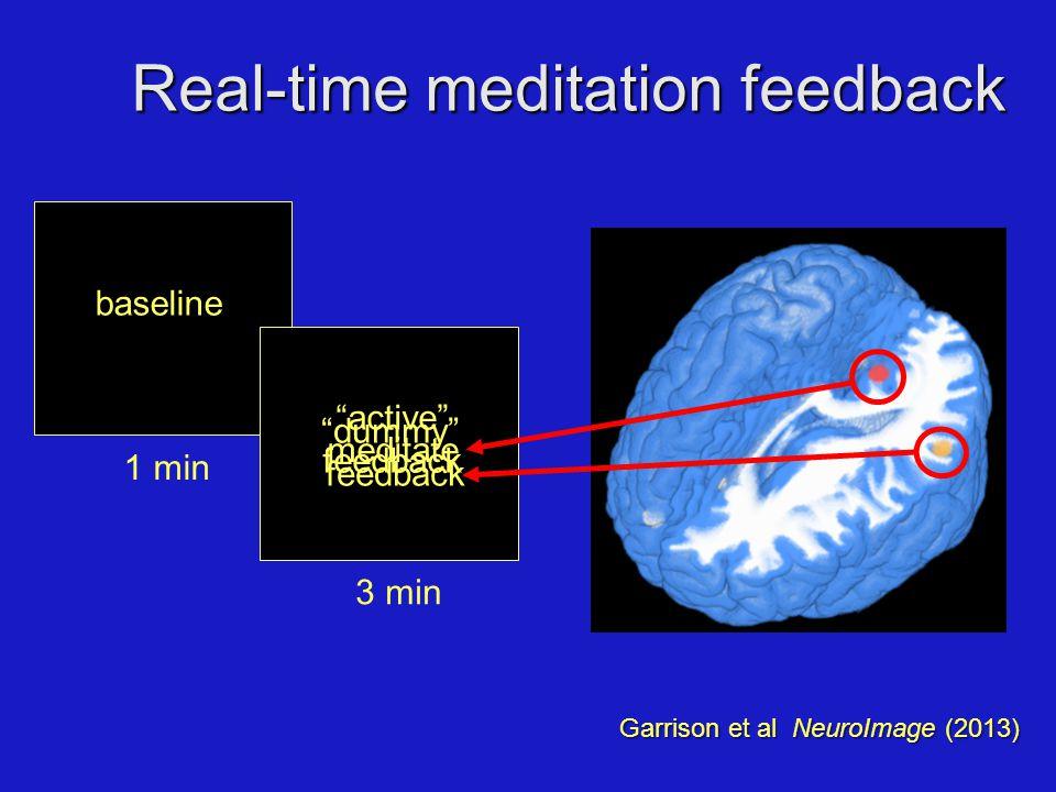 "1 min baseline Real-time meditation feedback 3 min meditate ""active"" feedback ""dummy"" feedback Garrison et al NeuroImage (2013)"