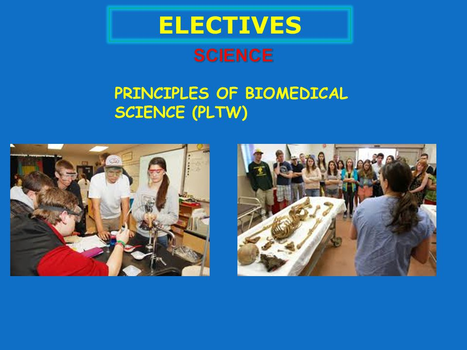 ELECTIVES PRINCIPLES OF BIOMEDICAL SCIENCE (PLTW)
