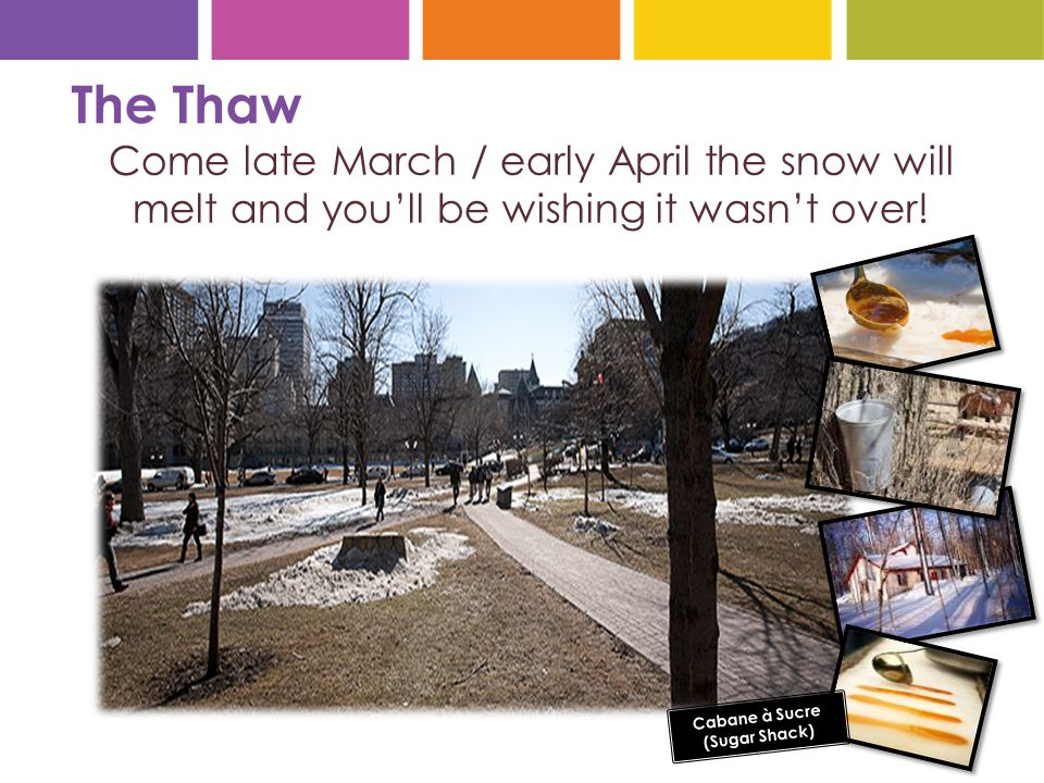 The Thaw Come late March / early April the snow will melt and you'll be wishing it wasn't over.