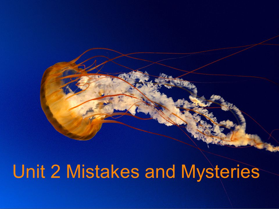 Unit 2 Mistakes and Mysteries