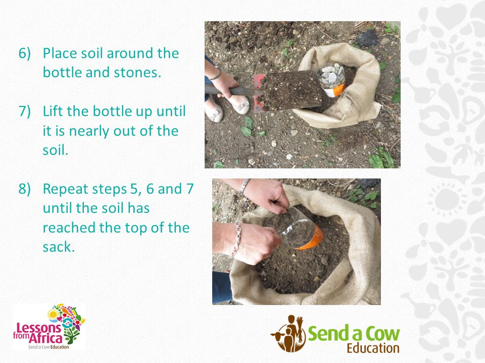 6)Place soil around the bottle and stones. 7)Lift the bottle up until it is nearly out of the soil.