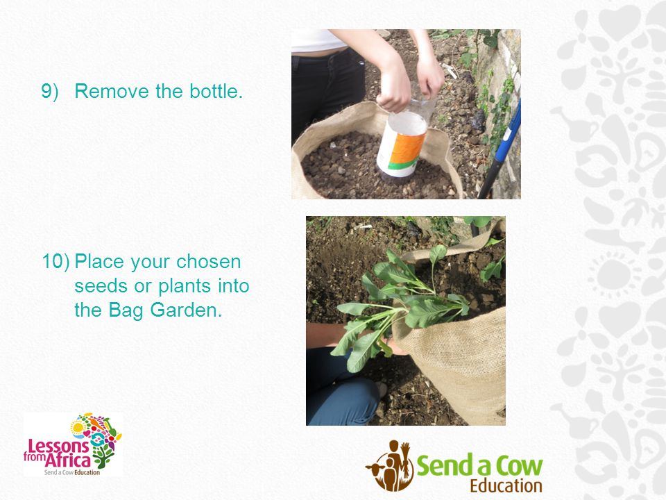 9)Remove the bottle. 10)Place your chosen seeds or plants into the Bag Garden.