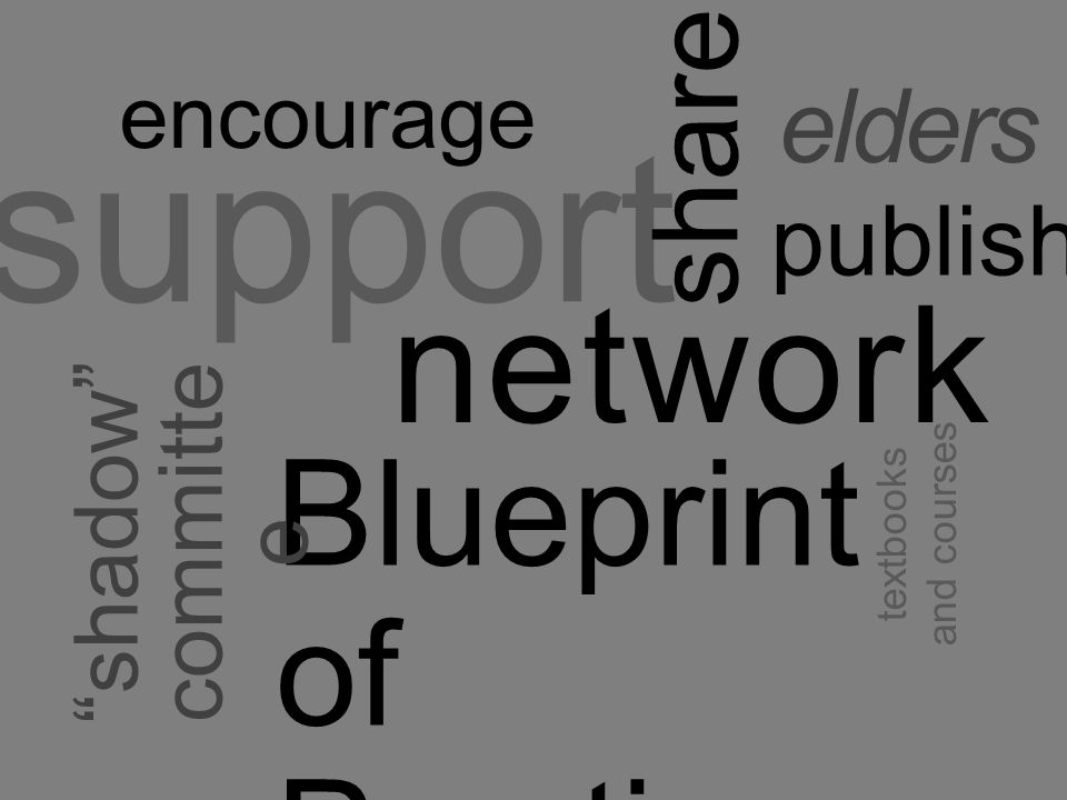 network support share Blueprint of Practice shadow committe e elders publish encourage textbooks and courses