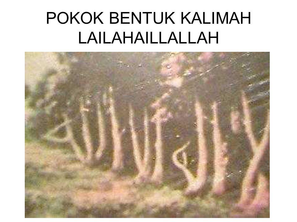 POKOK BENTUK KALIMAH LAILAHAILLALLAH
