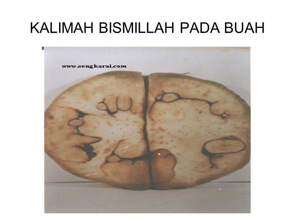 KALIMAH BISMILLAH PADA BUAH