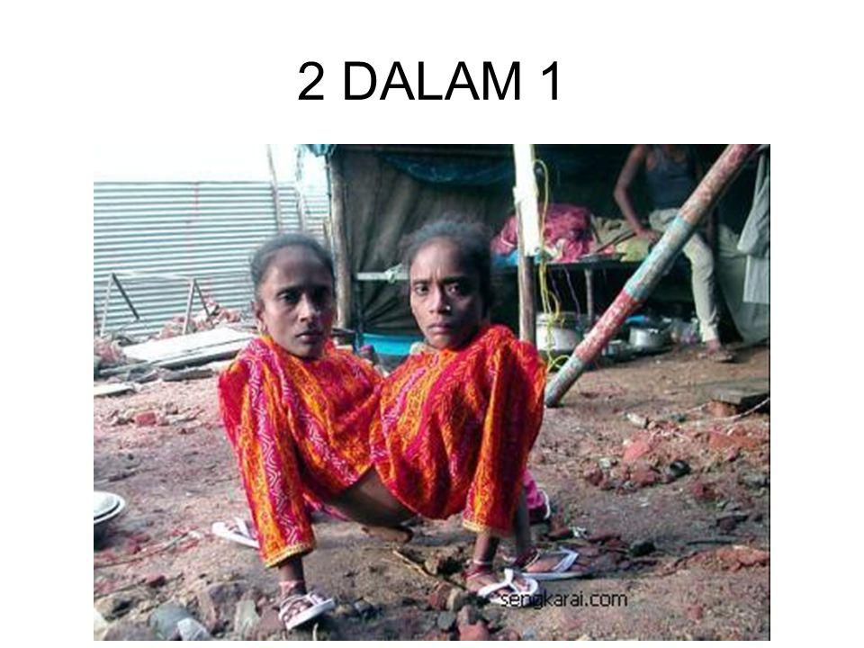 2 DALAM 1