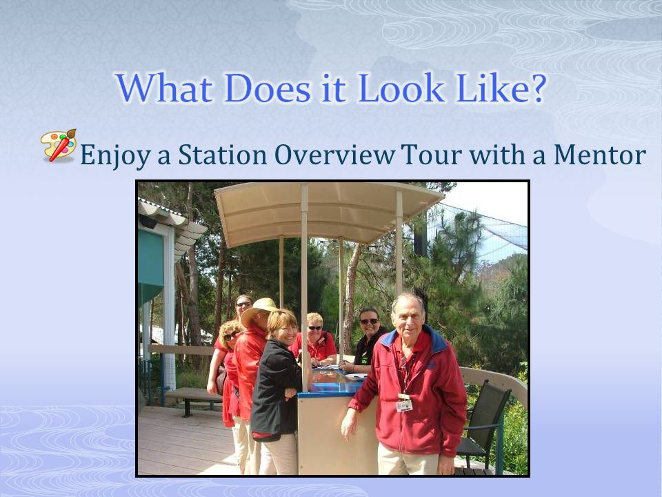 Enjoy a Station Overview Tour with a Mentor