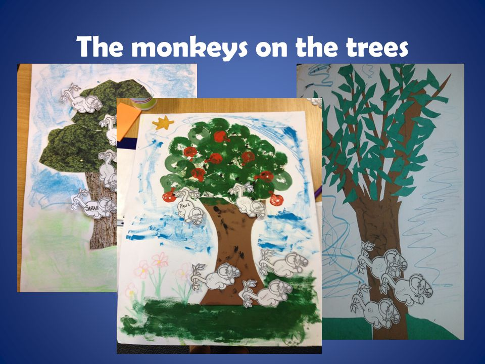 The monkeys on the trees