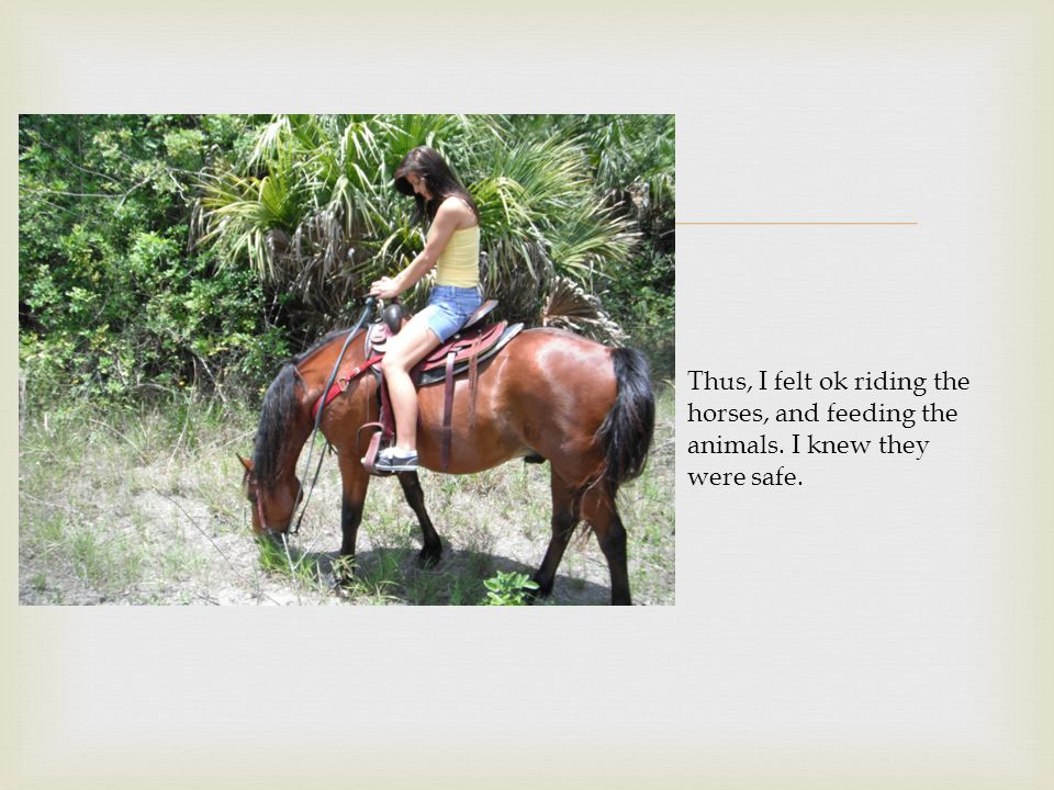  Thus, I felt ok riding the horses, and feeding the animals. I knew they were safe.