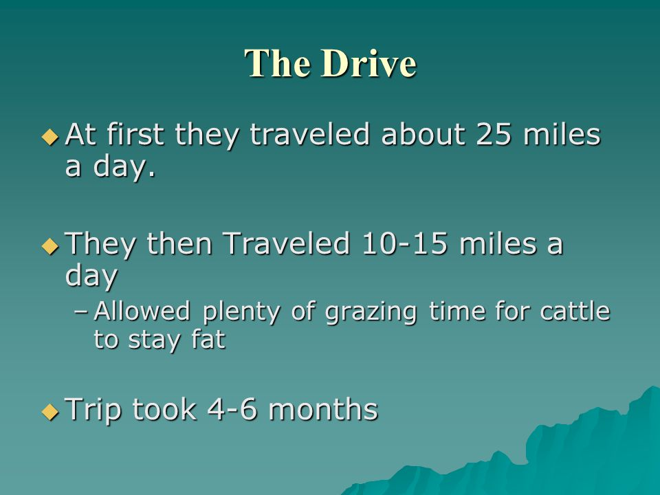 The Drive  At first they traveled about 25 miles a day.  They then Traveled 10-15 miles a day –Allowed plenty of grazing time for cattle to stay fat