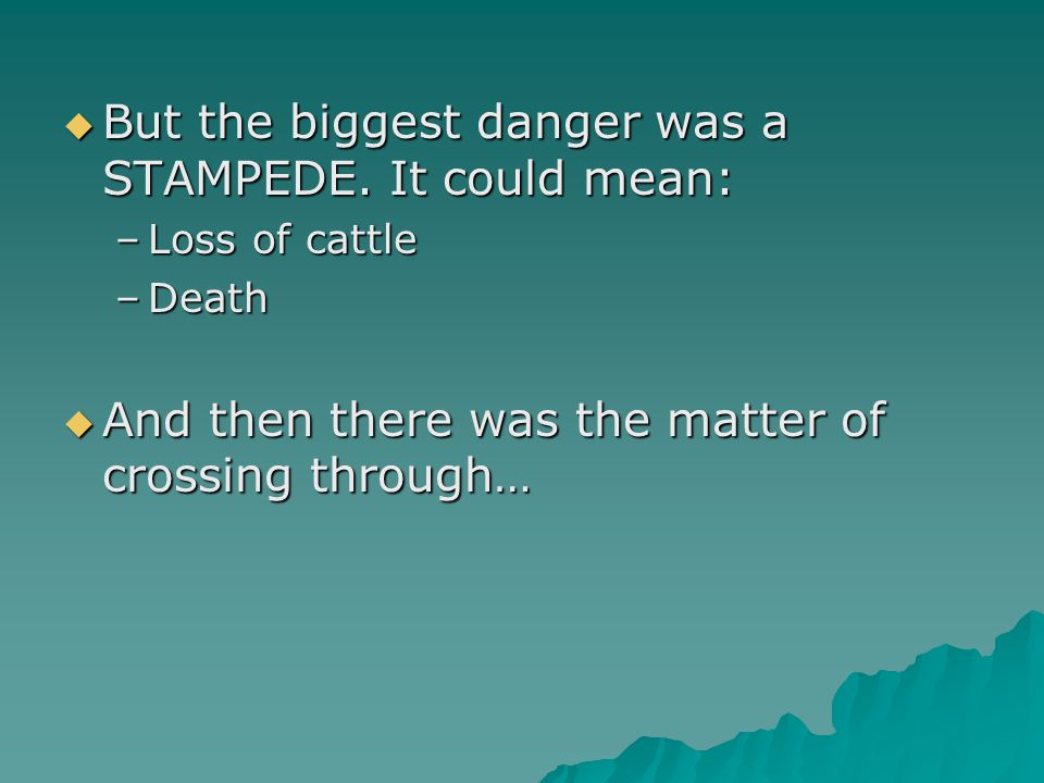  But the biggest danger was a STAMPEDE. It could mean: –Loss of cattle –Death  And then there was the matter of crossing through…