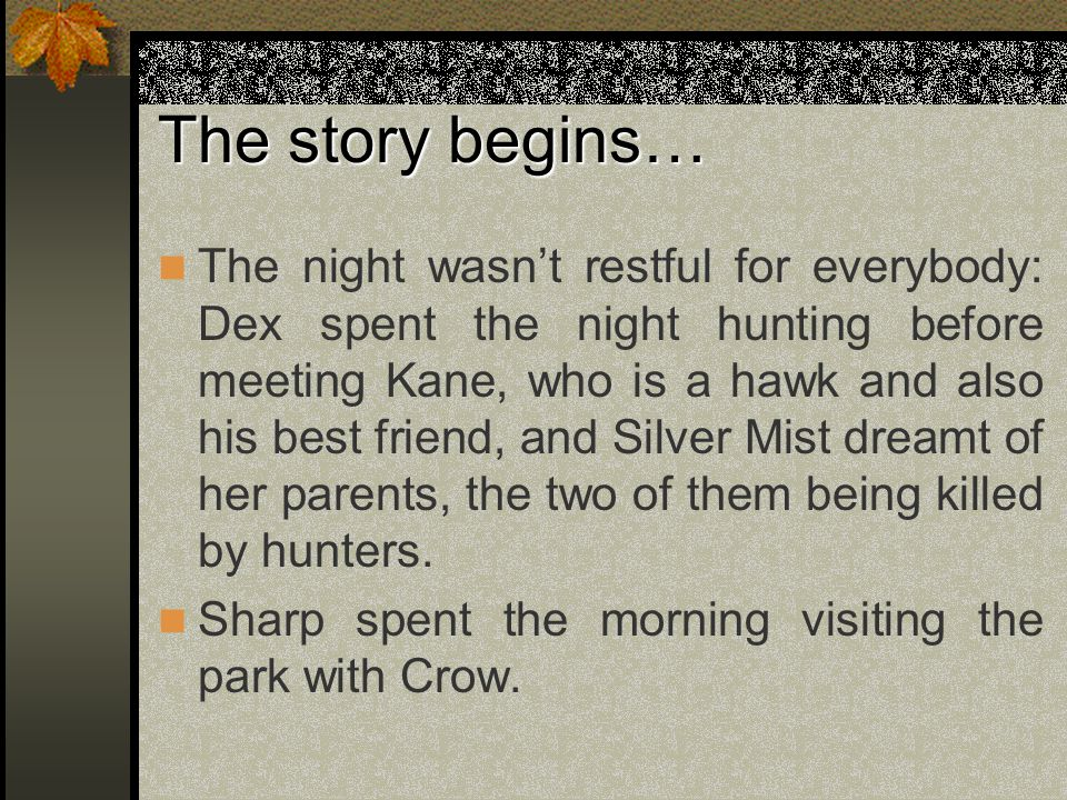 The story begins… The night wasn't restful for everybody: Dex spent the night hunting before meeting Kane, who is a hawk and also his best friend, and Silver Mist dreamt of her parents, the two of them being killed by hunters.