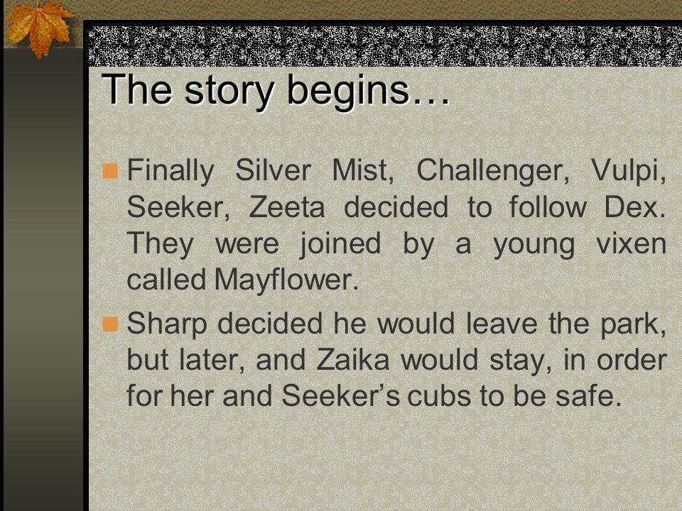 The story begins… Finally Silver Mist, Challenger, Vulpi, Seeker, Zeeta decided to follow Dex.
