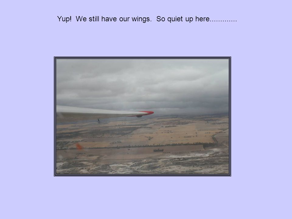 Yup! We still have our wings. So quiet up here.............