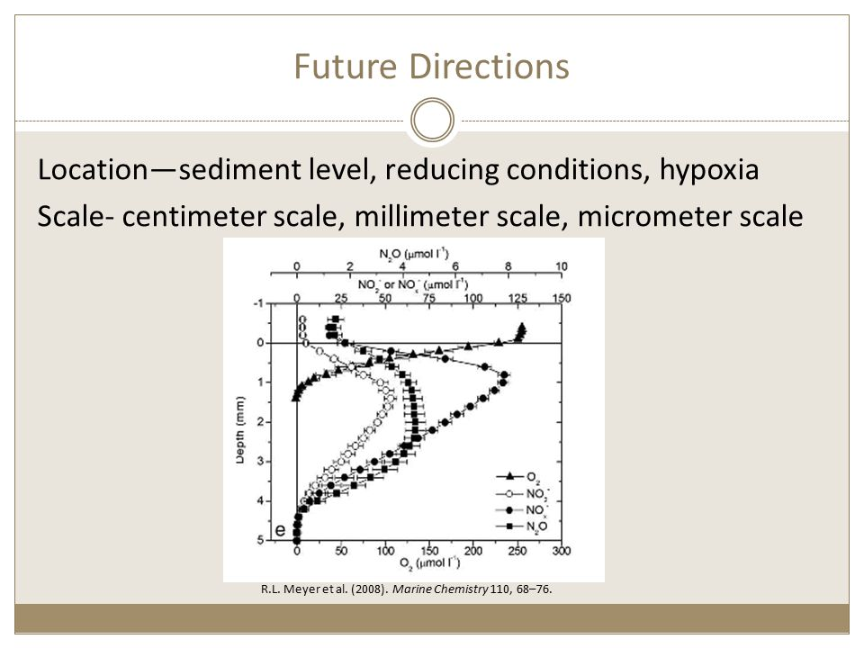 Future Directions Location—sediment level, reducing conditions, hypoxia Scale- centimeter scale, millimeter scale, micrometer scale R.L.