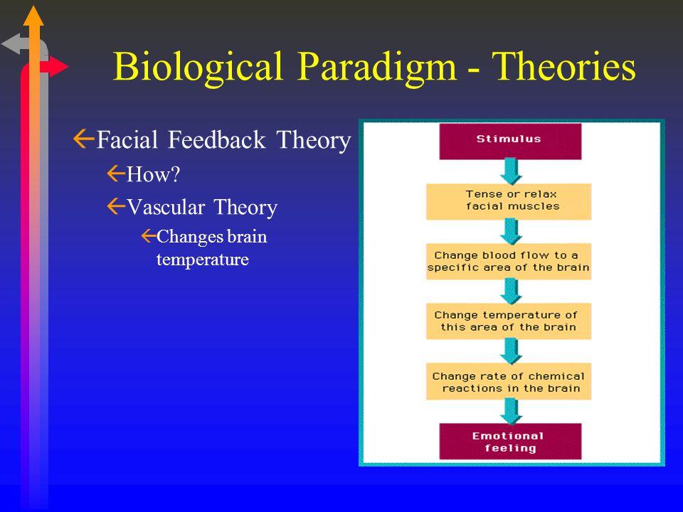 ßFacial Feedback Theory ßHow? ßVascular Theory ßChanges brain temperature