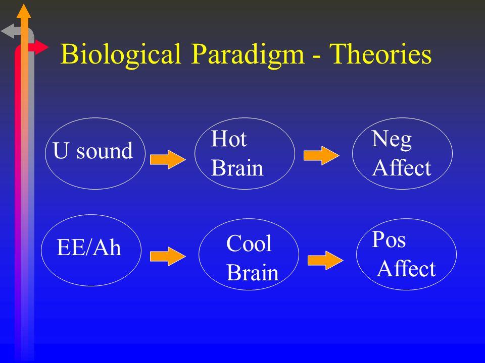 U sound EE/Ah Hot Brain Neg Affect Cool Brain Pos Affect Biological Paradigm - Theories