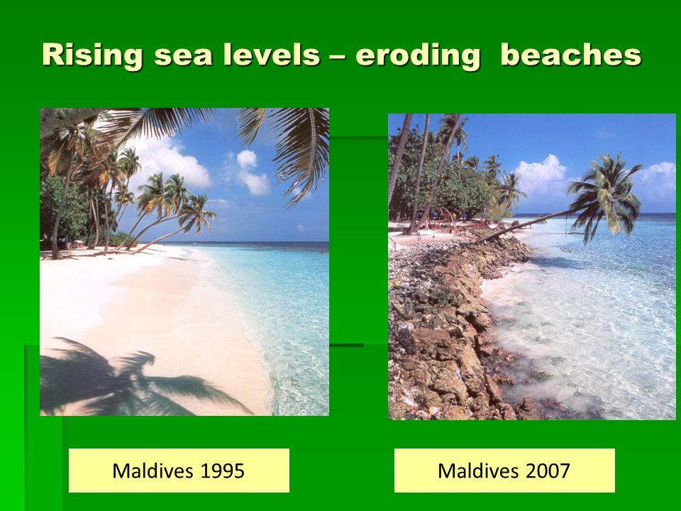 Rising sea levels – eroding beaches Maldives 1995Maldives 2007