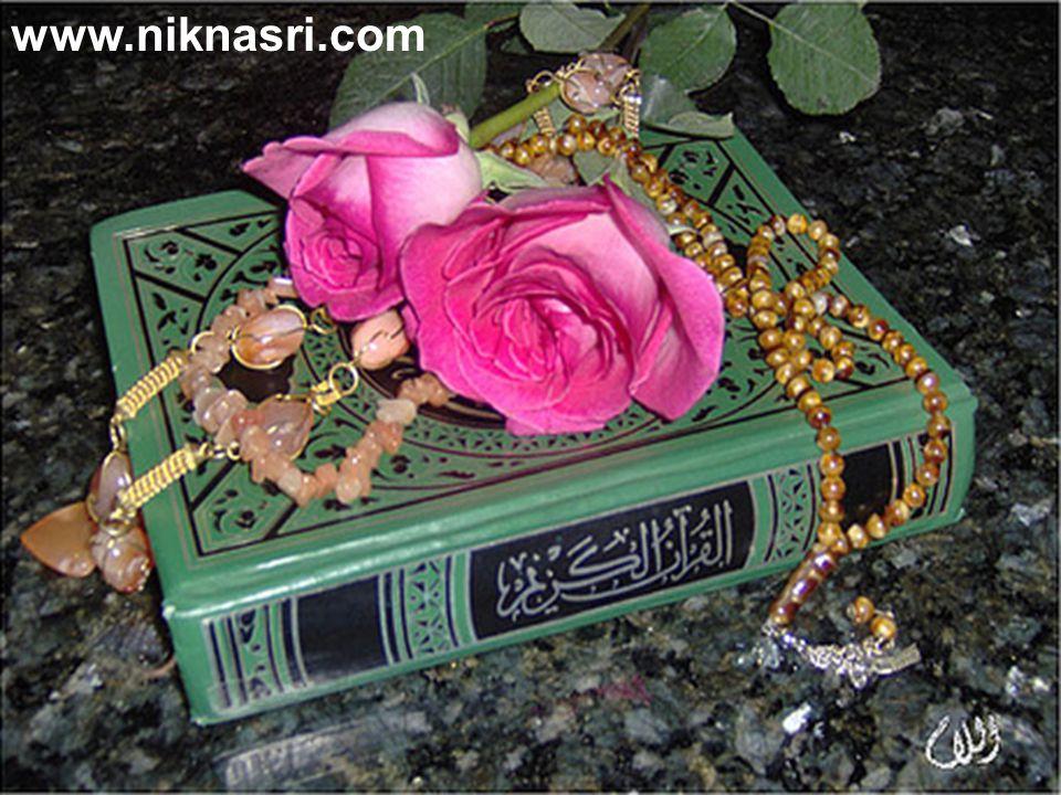 www.niknasri.com