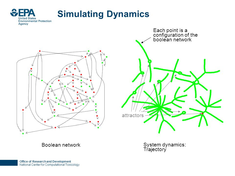 Office of Research and Development National Center for Computational Toxicology Simulating Dynamics Boolean network System dynamics: Trajectory Each point is a configuration of the boolean network attractors