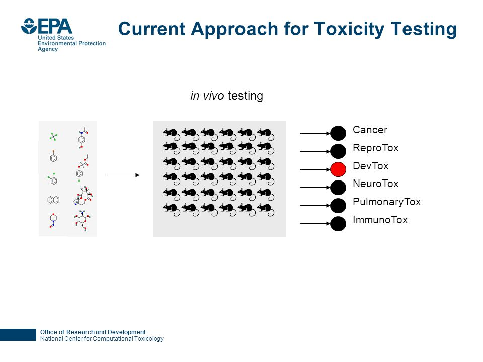 Office of Research and Development National Center for Computational Toxicology Current Approach for Toxicity Testing Cancer ReproTox DevTox NeuroTox PulmonaryTox ImmunoTox in vivo testing