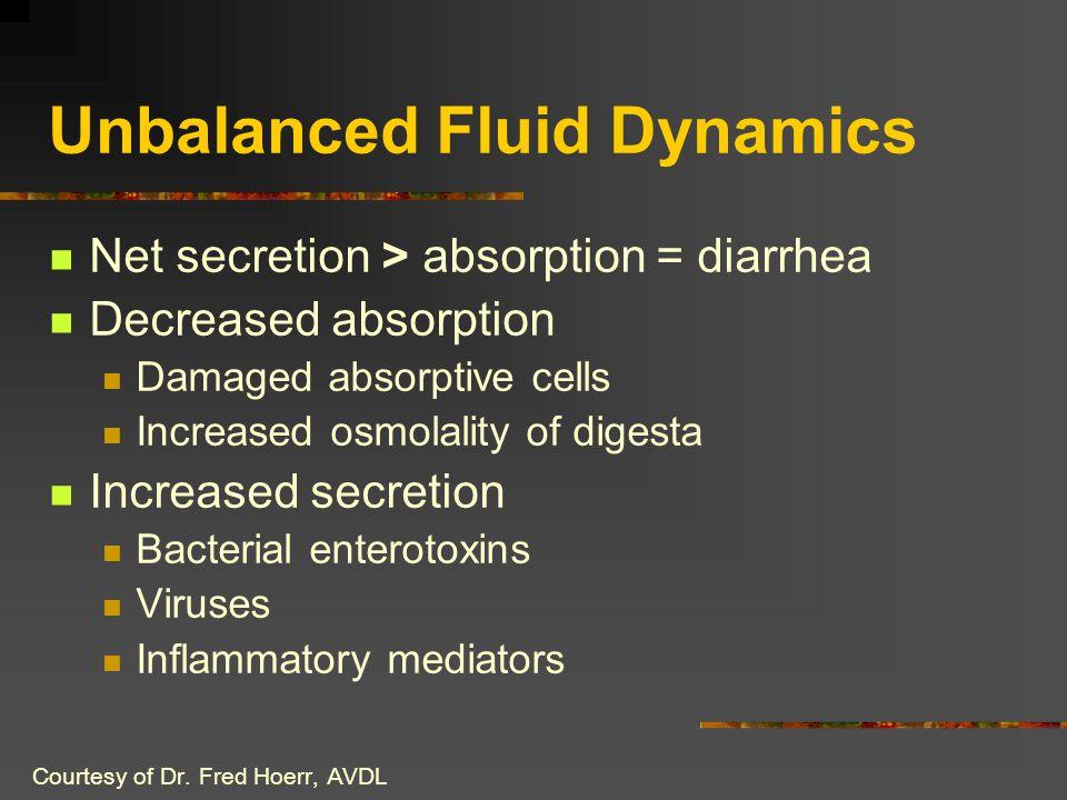 Unbalanced Fluid Dynamics Net secretion > absorption = diarrhea Decreased absorption Damaged absorptive cells Increased osmolality of digesta Increase